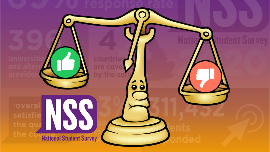 the national student survey review