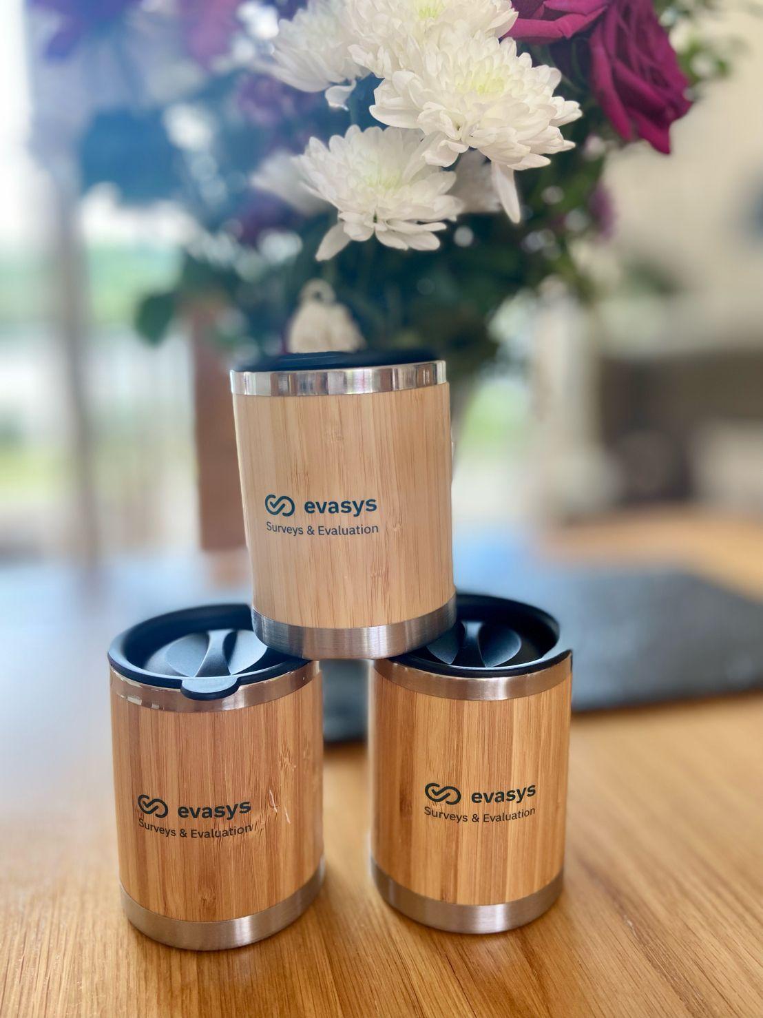 evasys bamboo coffee mugs